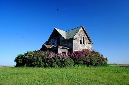 Housewithlilacs2